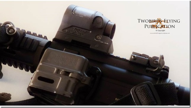 Trijicon SRS Blog Photo