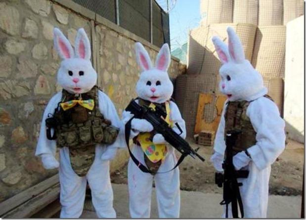 Tactical Bunny