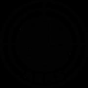 Steyr_Arms_Logo